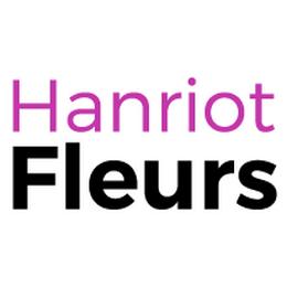 Logo Hanriot Fleurs